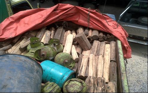 143-kayu gaharu1