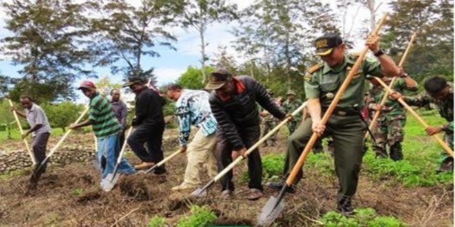 Kodim 1702/Jayawijaya Memberikan Bantuan Alat Pertanian Kepada Masyarakat Distrik Saminage Kab. Yahukimo