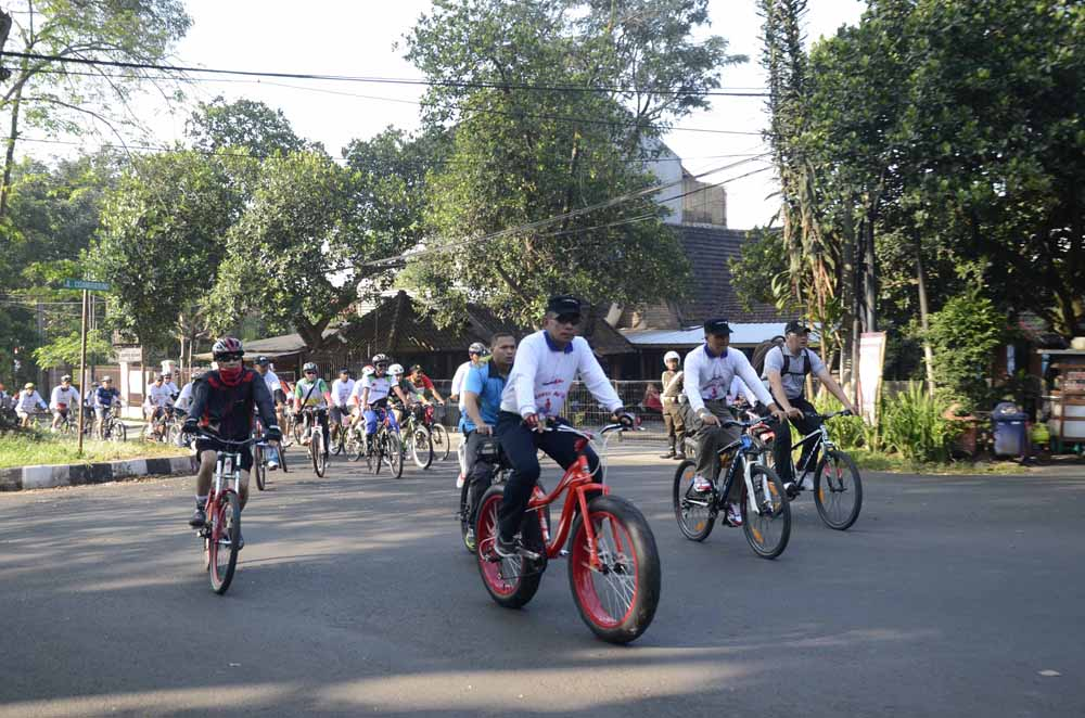 Gowes 1