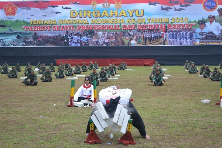 "HUT KE 69 TNI ""PATRIOT SEJATI,PROFESIONAL DAN DICINTAI RAKYAT"""