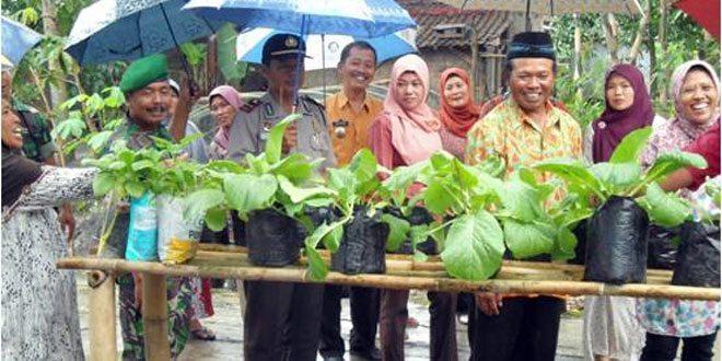 Kec. Sukodono Menerima Kunjungan Tim Diversifikasi dari Badan Ketahanan Pangan Kab Sragen
