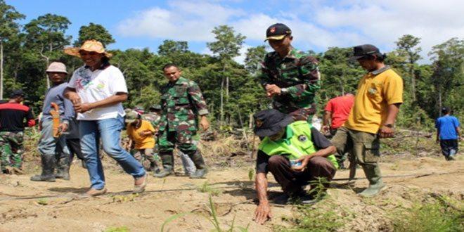 Upaya Meningkatkan Ketahanan Pangan Wilayah Satgas Pamtas Yonif 400/Raider