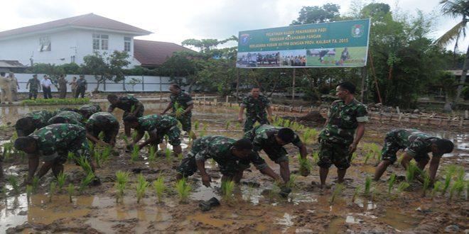 Kodam XII/Tanjungpura Sebagai Kader Pendukung Ketahanan Pangan