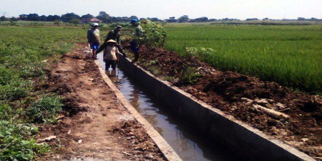 Koramil Bae Kerahkan Babinsa Awasi Pembangunan Irigasi