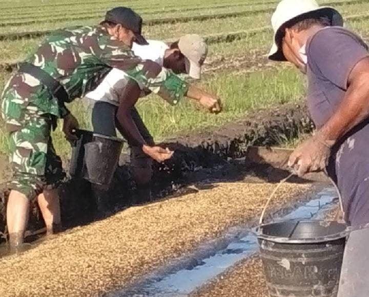 TNI Hanya Mendampingi Secara Non Teknis