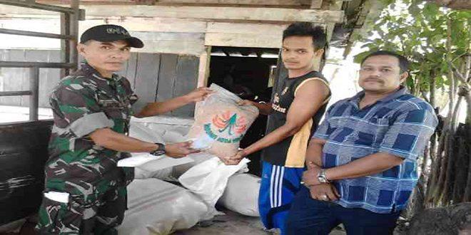Babinsa koramil 01/Lamno Bersama PPL Membagikan Bantuan Bibit Padi