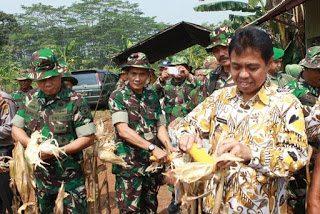 Walikota Dan Kodim 0508/Depok Panen Perdana Padi Dan Jagung