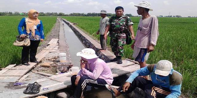 Babinsa Koramil 01/Demak Kota Melaksanakan Pengawasan dan Membantu Pembangunan Irigasi