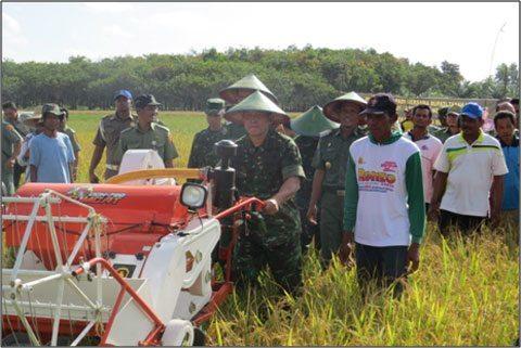 Kodim 1009/Pelaihari Panen Raya Padi Di Desa Sei Riam Kec. Pelaihari