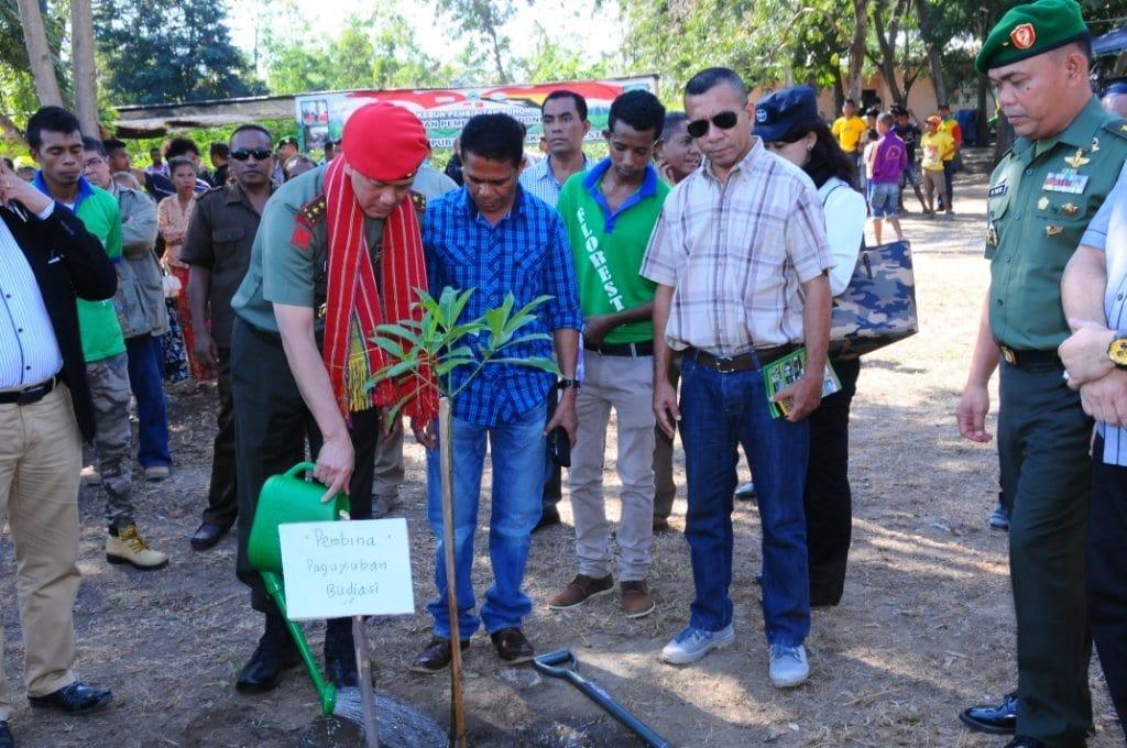 Pemerintah Indonesia Serahkan 50.000 Bibit Pohon Kepada Pemerintah Timor Leste