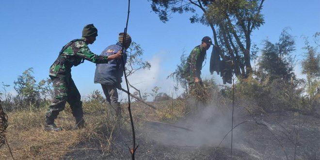 TNI Bersama Perhutani Dan Masyarakat Padamkan Kebakaran