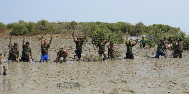 Kodim 0713/Brebes Tanaman Pohon Bakau Di Bantaran Sungai Dan Pesisir Pantai Prapag Kidul Losari
