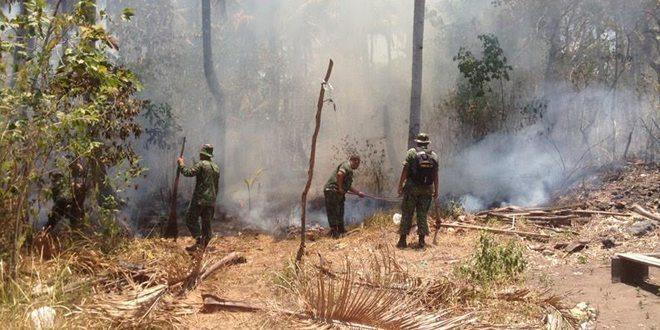 Kodim 1501/Ternate Sigap Atasi Kebakaran Hutan
