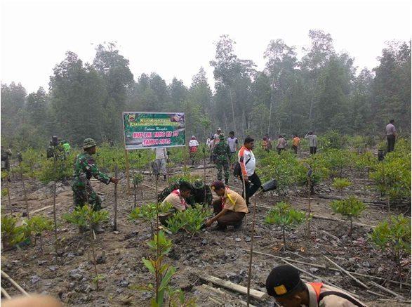 HUT Ke-70 TNI, Kodim 0314/Inhil Gelar Penanaman 1.000 Pohon Bakau