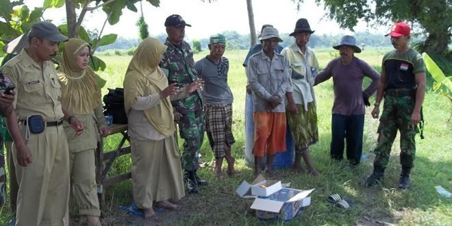 Kodim Sosialisasikan Demplot VUB Pajale ke Petani Kamal Bangkalan