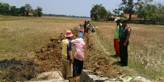 Danramil Bersama Muspika Arosbaya, Tinjau Realisasi Pembangunan Jaringan Irigasi Untuk Petani