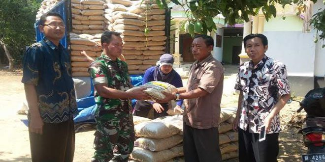 Kodim Bangkalan Intensifkan Penyaluran Bantuan Bibit Padi Bersubsidi pada Petani