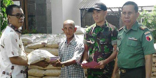 Kodim Bangkalan Salurkan Bibit Padi Varietas Ciherang