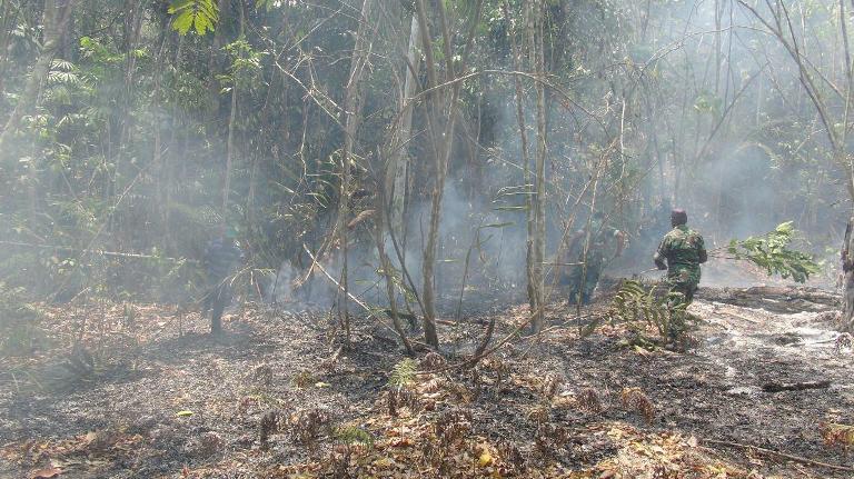 Pemadaman Kebakaran Di Kabupaten Manokwari Selatan Oleh TNI