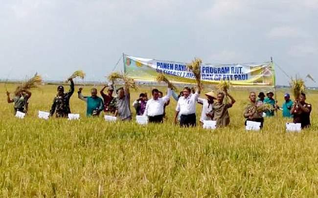 Menteri Pertanian RI Bersama Danrem 043/Gatam Panen Raya Padi Di Wilayah Provinsi Lampung