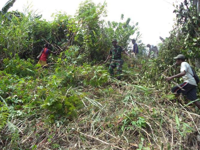 Koramil 1709-05/Wartas Bersama Masyarakat Distrik Waropen Atas Buka Lahan Pertanian