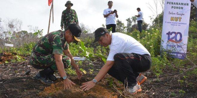 BRI Kanca Sorong Gandeng Korem 171/PVT Gelar Penanaman Pohon