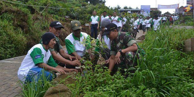 1000 Pohon Ditanam Di Lereng Sikunir
