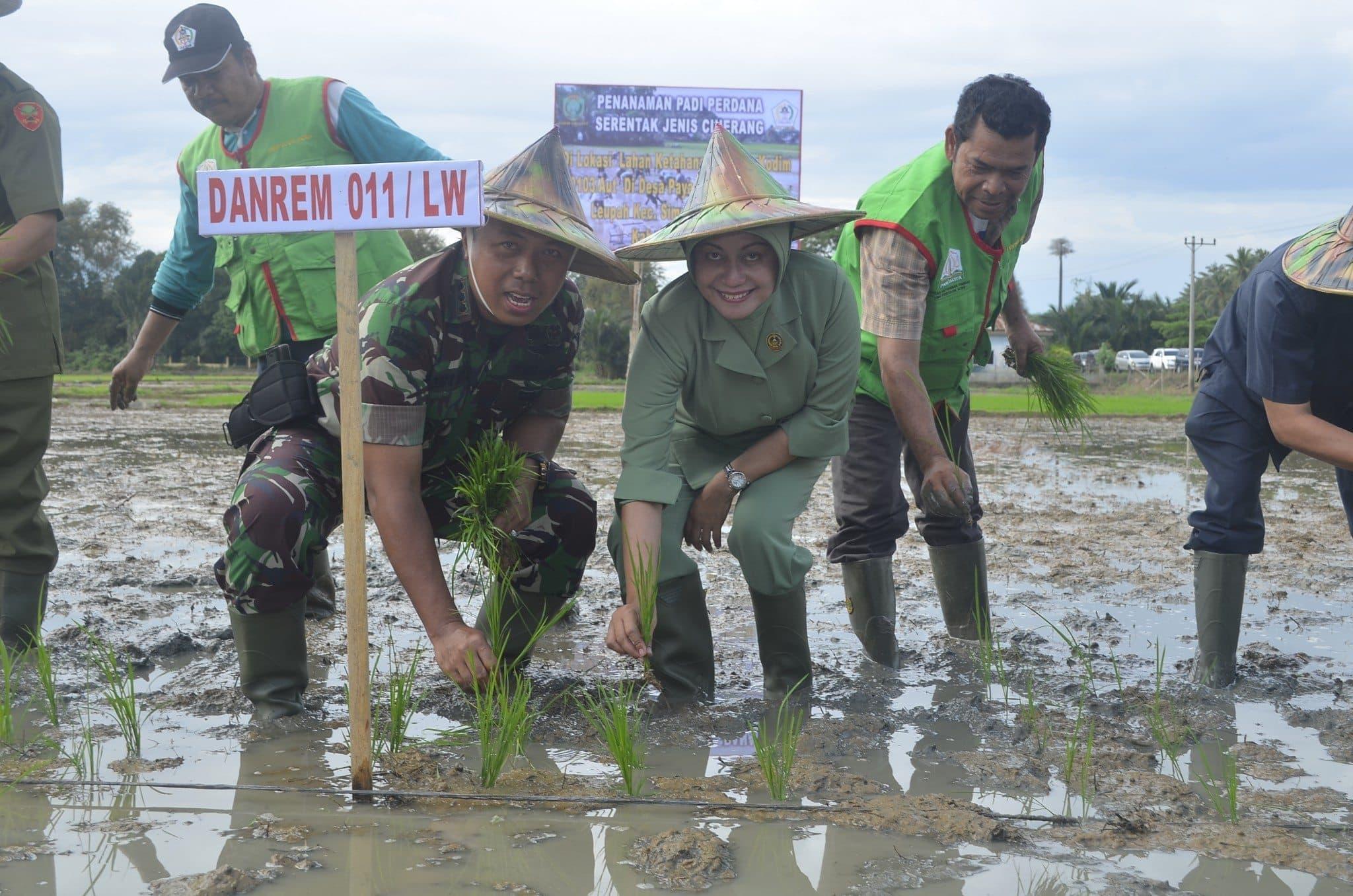 Danrem 011/LW Tanam Padi Bersama Masyarakat Aceh Utara