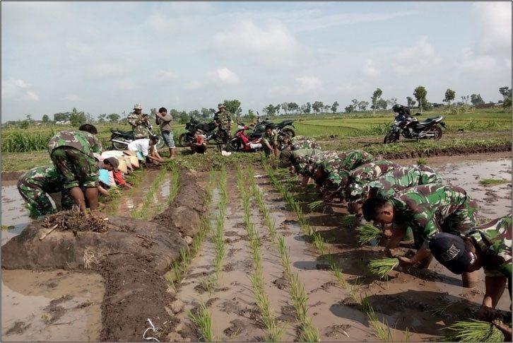 Koramil 080403 pendampingan di desa banjarejo (2)