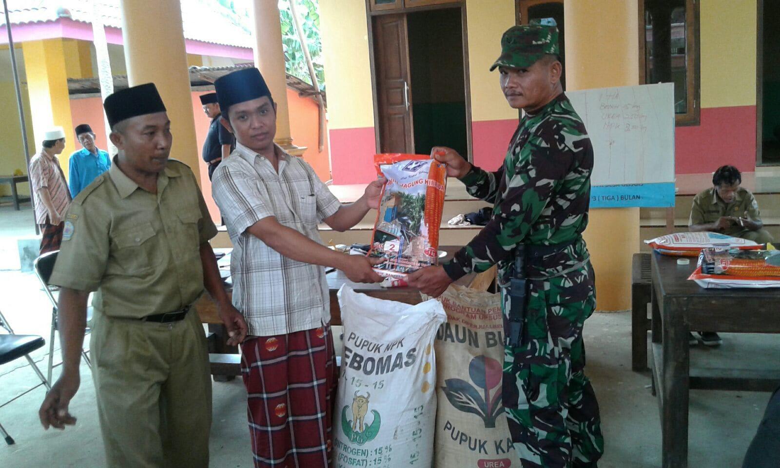 Babinsa Modung Bangkalan, Intensif Pendampingan dan Pengawasan Distribusi Bibit dan Pupuk