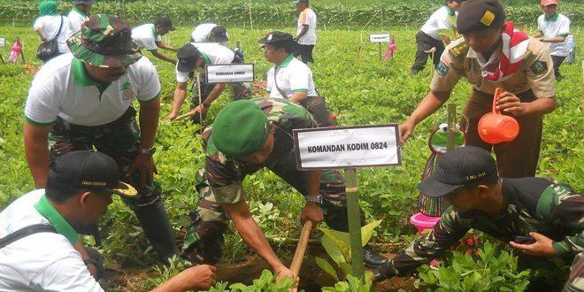 Puncak Penanaman dan Pohon Penghijauan Dilaksanakan Kasdim 0824 Bersama Perhutani Jember