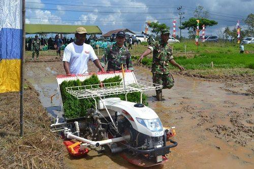 Komandan Kodim 1704/SRG Bersama Dinas Pertanian Kab. Sorong Melaksanakan Tanam Padi Serentak Untuk Mencapai Swasembada Pangan Nasional