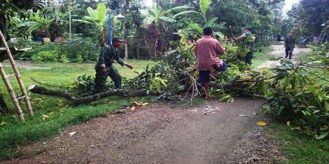 Antisipasi Angin Kencang, Personel Koramil 09/Randublatung Tebang Pohon