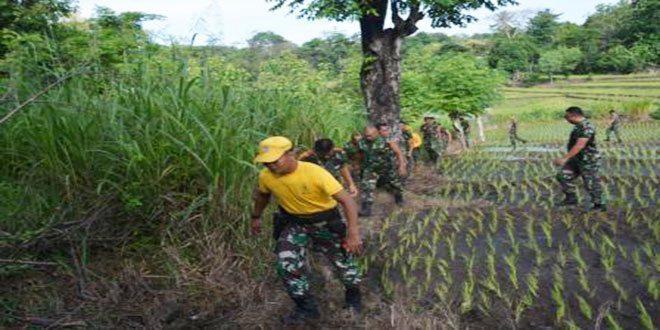 Jaga Stamina, Prajurit Korem 142/Tatag Laksanakan Latihan Hanmars