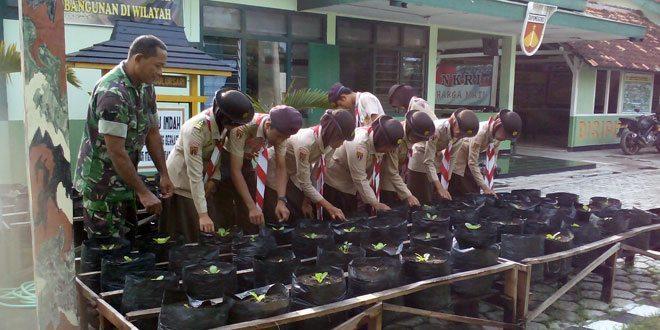 Anggota Koramil 11/Sulursari Menanam Sayuran Bersama Pramuka