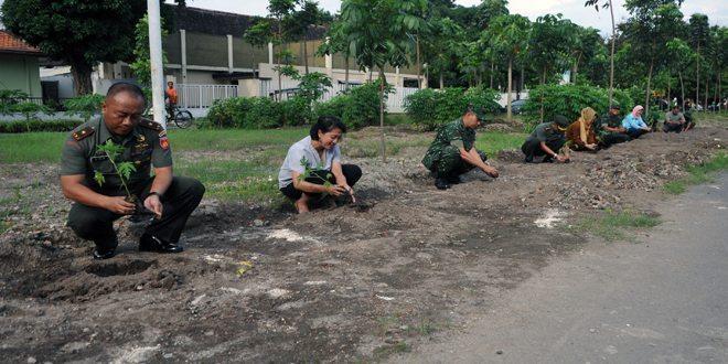 Seratus Bibit Pohon Pepaya Ditanam di Mess Korem 072 Pamungkas