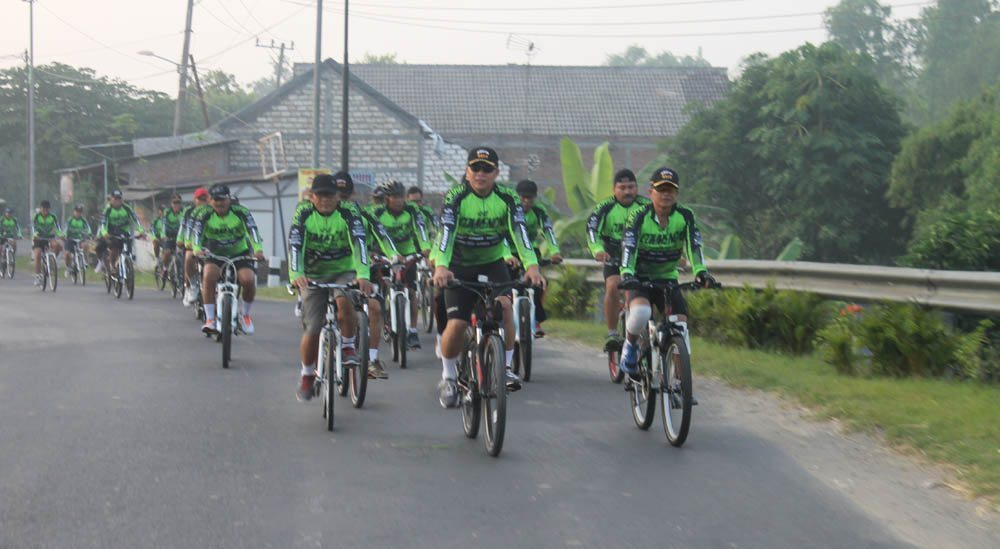 GOWES 2