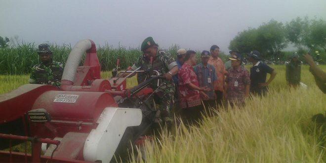 Sosialisasi Mekanisme Pertanian Di Areal Persawahan Poktan Tipar Songgom