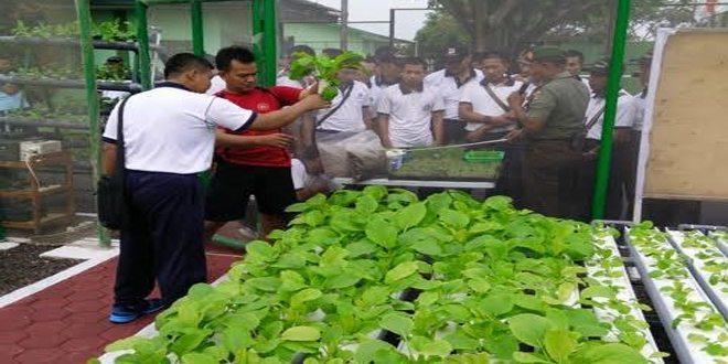 Kodim 0320/Dumai Sosialisasi Budidaya Hidroponik Kepada ABK KRI Teluk Ratai