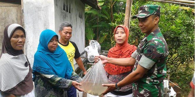 Babinsa Koramil 19/Kuwarasan Serahan Bibit Ikan