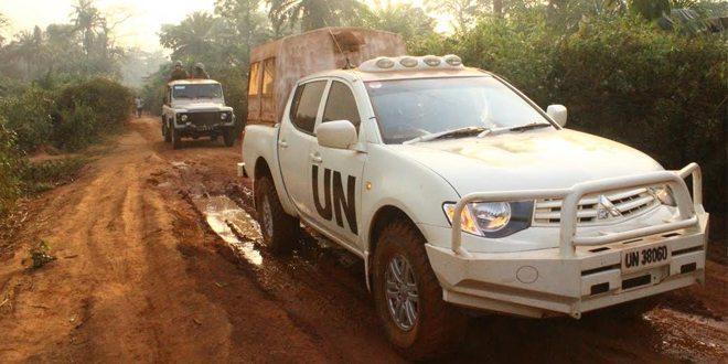 Satgas Kizi TNI Survey Jalan di Belantara Hutan Kongo