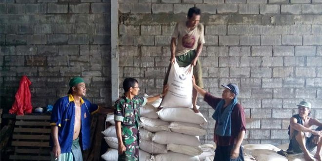 Babinsa Socah Bangkalan Cek Pupuk Subsidi untuk Poktan