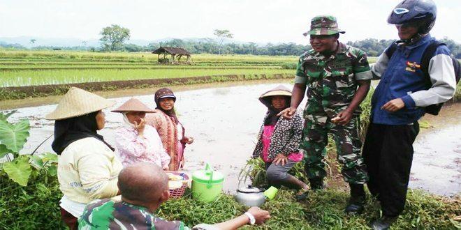 TNI Tanamkan Belanegara Para Petani