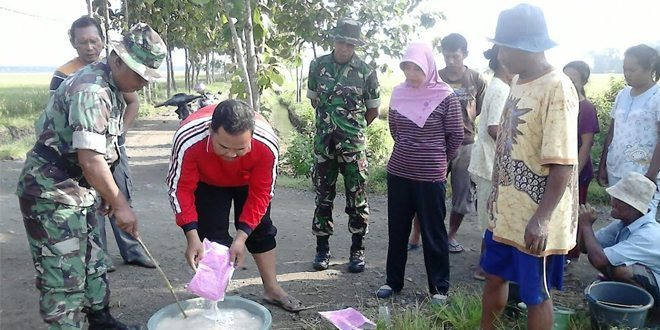 Babinsa Ramil Padas Bersama PPL dan Petani Basmi Hama Wereng di Desa Pelang lor Ngawi