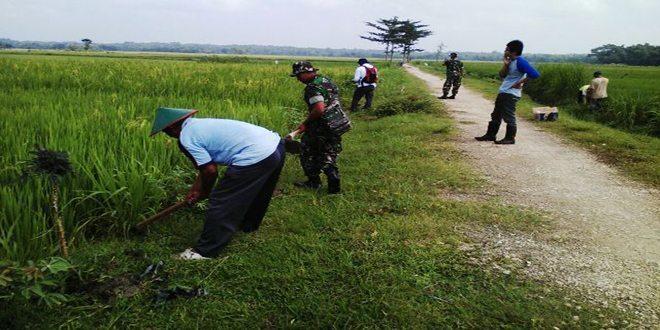TNI Koramil 12/Ngawen, Adakan Penghijauan