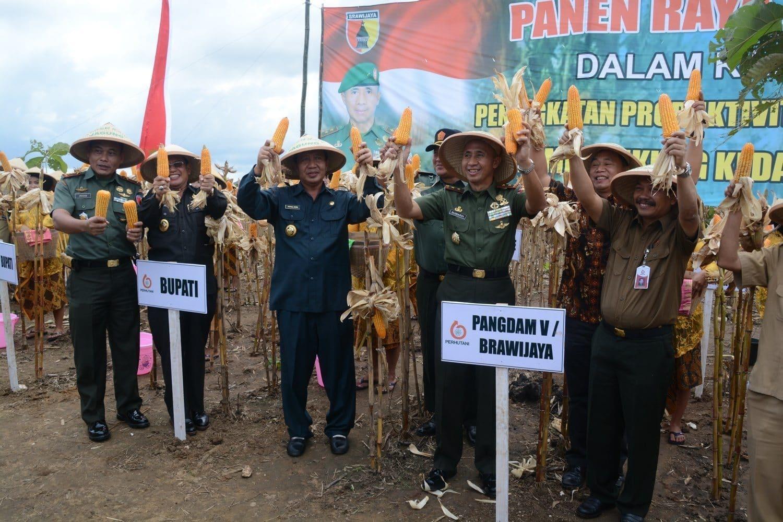 Pangdam V/Brawijaya Dukung Kedaulatan Pangan di Tuban