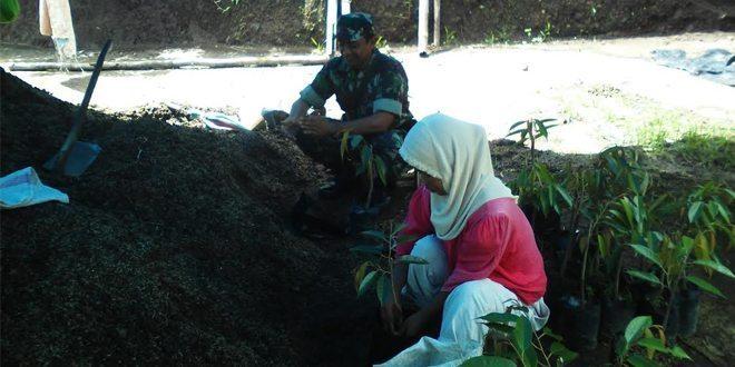 Hortikultura Sebagai Penopang Hidup