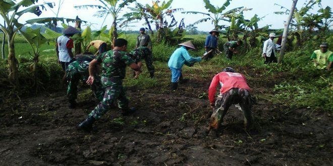 Koramil Bandongan dan Petani siapkan Lahan Penampungan Pupuk Organik