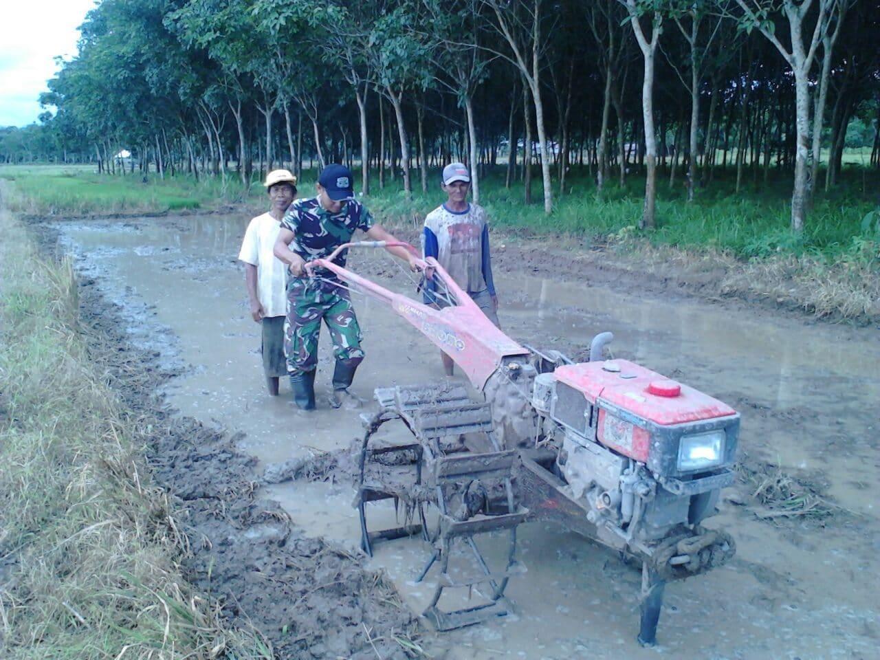 Babinsa Air Periukan Bantu Petani Siapkan Penyemaian