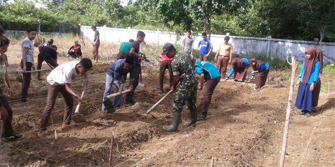 Babinsa Kodim Aceh Jaya Bantu Membuat Kebun Sehat